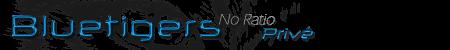 logo-bluetigers